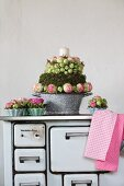 Arrangements of roses in old enamel pan and china flan dishes on old, wood-burning kitchen cooker