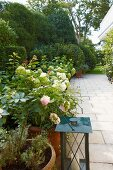 Summer mood - flowering potted plants on a tiled terrace with a view of the garden