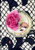 Magnificent rose head and half-eaten macaroon on china plate & black lace tablecloth