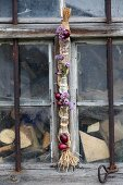 Red onions and flowering marjoram in glass bottles attached with wire to raffia braid hanging in front of old barn window