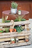 Plant stand made from wooden pallet leaning against cylindrical corten steel table element