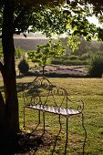 Aussichtsplätzchen - Filigrane Metall Sitzbank vor Baum und Blick in stimmungsvolle, mediterrane Landschaft