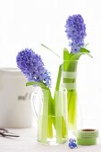 Two glasses decorated with masking tapes with two hyacinths inside