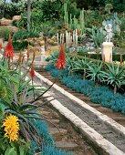 Detail of sluce in desrt style garden