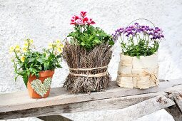 Blühendes Blumenarrangement in unterschiedlich gestalteten Blumentöpfchen auf einem Holzbret