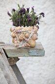 Blühende lila Pflanze im Blumentopf mit Muscheln verziert