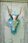 Decorative upcycling - antlers on wooden shield covered in printed wrapping paper on old wooden door with peeling paint