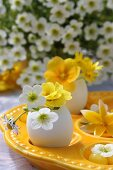 Eggshells used as miniature vases for primulas & saxifrage flowers