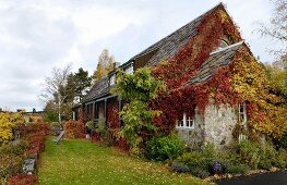 Idyllic country house in Norway covered in red and yellow autumn foliage