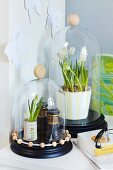White grape hyacinths and antique binoculars below glass covers decorated with wooden beads