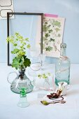 Various apothecary jars and lady's mantle leaves and flowers