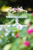 Festive flower arrangement on glass cake stand in garden