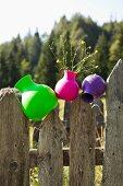 Kunststoff Vasen in Neon-Farben auf verwittertem Holzzaun