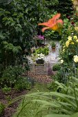 Grass path surrounded by lilies and roses leading to planter and besom broom against old house facade