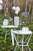Wood anemones under glass covers on small side tables in woodland clearing