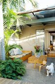 Day bed, box table and simple, 50's wooden chair on terrace with palm tree