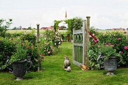 Rustic garden with chickens wandering amongst planted urns and open wooden gate with view of rose bushes