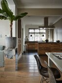 View from dining area with Eames chairs into open-plan kitchen with blackened oak cabinets; banana tree on mirrored plinth in foreground