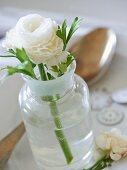 White ranunculus in glass vase decorating table