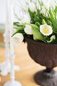 White tulips in urn