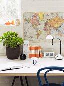 Geldbaum in dunklem Topf und Büroutensilien neben weisser Schreibtischleuchte auf Tisch, davor Weltkarte an geweisselter Ziegelwand aufgehängt
