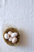 Unpainted eggs in Easter nest