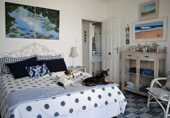 Dog on blue and white bed cover in rustic, maritime bedroom