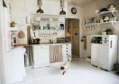 Country-house kitchen with white fitted cabinets; cat walking across white wooden floor