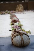 Pebble bound in cord in front of narrow bed of succulents