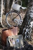 Two bags on fur blanket next to birch trunk in woods; basket on bicycle in background