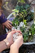Woman's hands and child' hand making a spring arrangement of pussy willow and spring-flowering plants