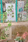 Vintage prints of plants and butterflies decorating greenhouse windows and walls