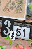 Old house numbers arranged below framed, antique botanical drawing