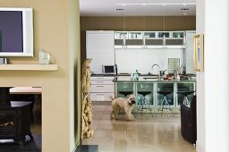Dog in open-plan kitchen with sand-coloured walls and bar stools with black shell seats at counter with glass doors on base units