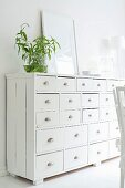 Green leaves in spherical vase on white-painted, old chest of drawers with shell handles
