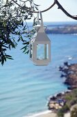 White lantern hung from tree and view of sea coast