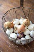 Altes Friteusensieb zur Aufbewahrung von Knoblauch & Zwiebeln
