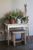 Pflanzentöpfe auf schlichtem Holztisch und rustikaler Holzhocker vor Wand im Vintagelook