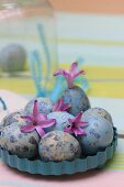 Dyed ornamental eggs and pink hyacinth florets in light blue, metal quiche tin