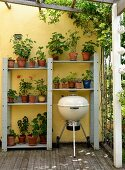 Shelves of geraniums and kettle grill on veranda with yellow-painted wall