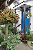 Hauseingang dekoriert mit blühenden Blumentöpfen