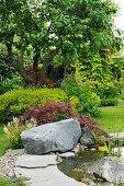 Teich mit Findling am Rand in sommerlichem Garten