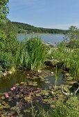 Blick über sommerlichen Gartenteich mit Seerosen auf See