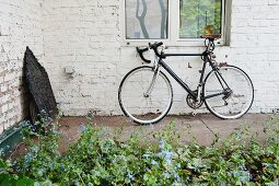 Bicycle leaning against whitewashed brick wall behind flowerbed