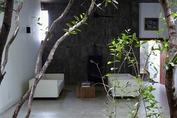 Weisse Outdoormöbel auf überdachter Terrasse; Eukalyptuszweigen im Vordergrund