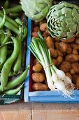 Fresh vegetables (beans, artichokes, spring onions and potatoes) in wooden crates