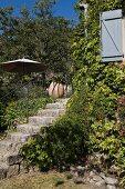 Begrünte Natursteintreppe zu der Terrasse eines provenzalischen Gästehauses, seitlich ein geöffneter, hellblauer Bretterladen
