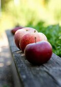 Row of red apples on weathered wooden board