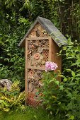 Insect hotel and flowering phlox in garden