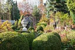 Landscaped garden with low box hedges and antique, stone Greek urn on plinth